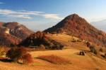 Васильовска планина - есен около с. Бабинци.