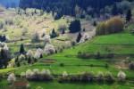 Родопа планина - пролетни мотиви от село Гела.