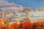 Есен в източни Родопи
