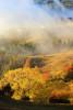 Златна есен в Родопа планина