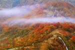 Есен във Васильовска планина