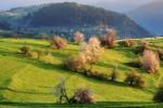 Пролетна утрин в село Горна Гела