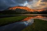 Цветовете на Пирин планина