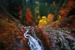 Над водопад Орфей. Екопътека Каньон на водопадите в Родопа планина